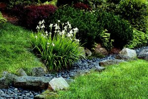 landscaping drainage system nrh 2